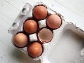 Comment savoir si un œuf est périmé